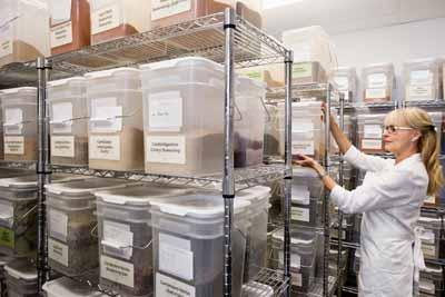 Walk-in Refrigerator Food Storage